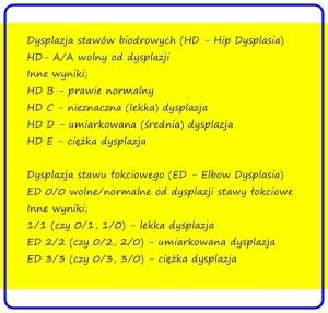ed-i-hd